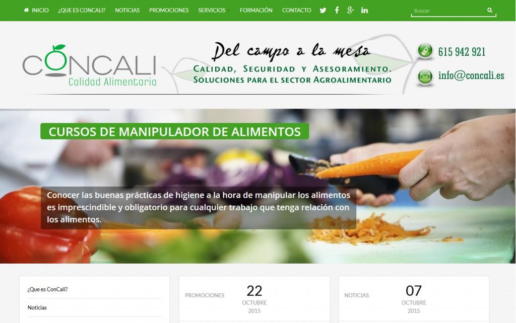 posicionamiento-web-concali