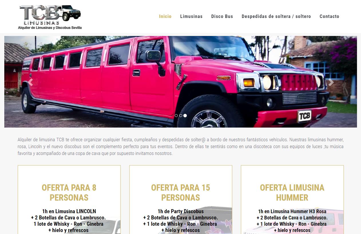 posicionamiento web tcb limusinas