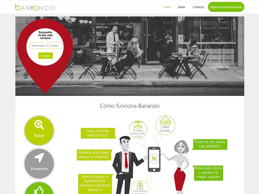diseño web bariando
