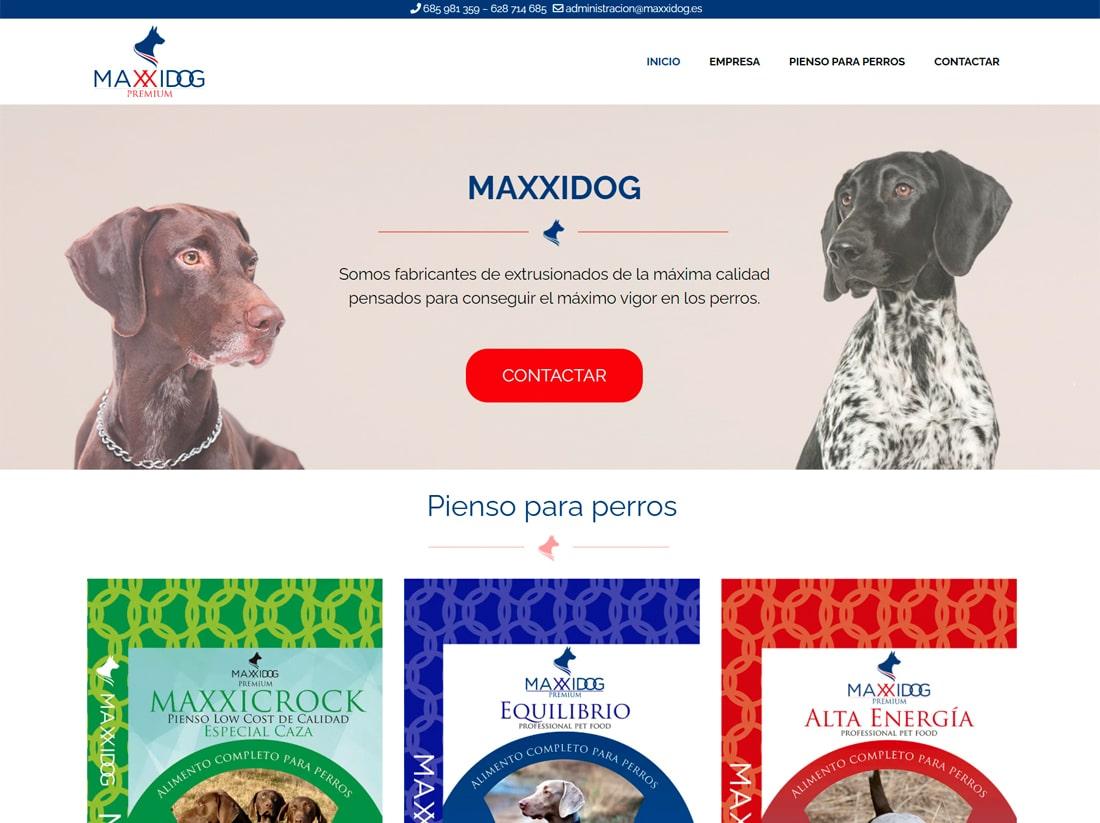 diseño web Maxxidog